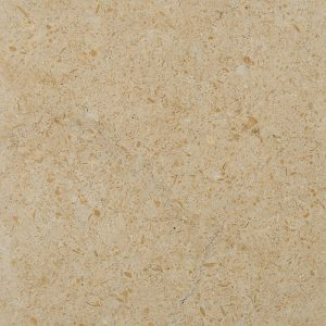 golden-shellstone-limestone