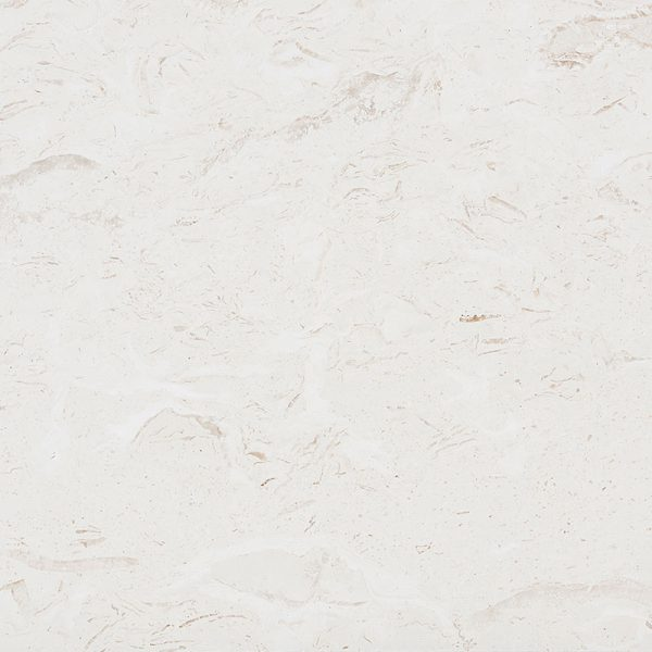 shell-stone-limestone